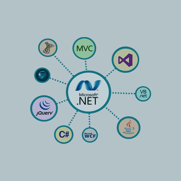 .net Development tool